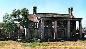 tara back lot 1950